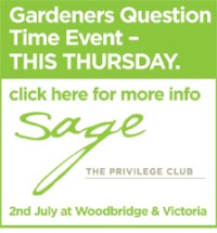 Notcutts Sage - Gardeners' Question Time
