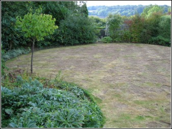 Lawn Renovation Process from www.grassclippings.co.uk