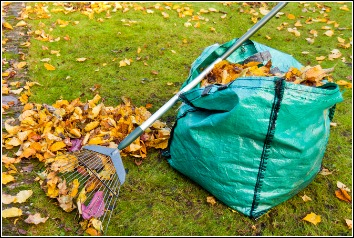 November Lawn Tasks