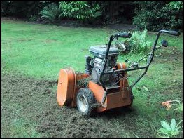 When to Scarify Your Lawn - www.grassclippings.co.uk