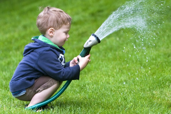 Grassclippings - Hose Pipe Ban Ends