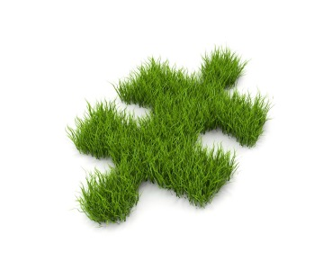 Grass Clippings - Lawn Puzzle