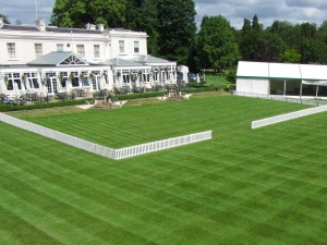Grassclippings - Phyllis Court Club