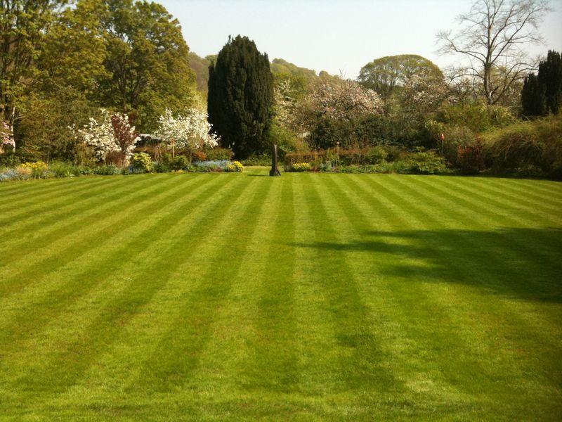 Grassclippings - British Lawns under Threat