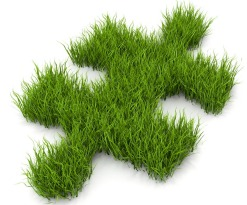 Grass Clippings  - Grass Puzzle