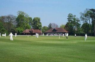 Weed Free - Sawbridgeworth Cricket Club