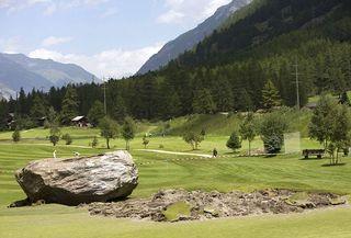 Weed Free - Swiss Alps Boulders