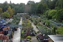 Weed Free Garden Centres