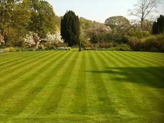 Grassclippings - The Perfect Lawn