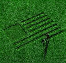 Grass Clippings - Green American Flag