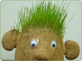 Grass Clippings - Growing Grass Seed