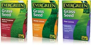 Grass Clippings - EverGreen Grass Seed