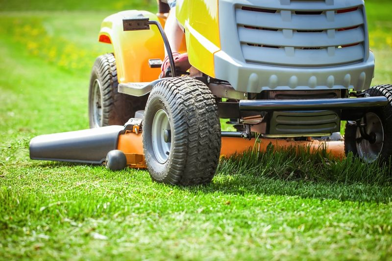 Grass Clippings - Lawn Mower Accident