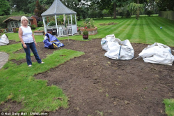 Grass Clippings - Grass Invaders Chafer Beetle Larvae