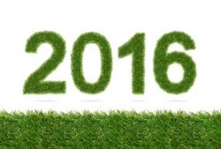 Grass Clippings - Happy New Year 2016