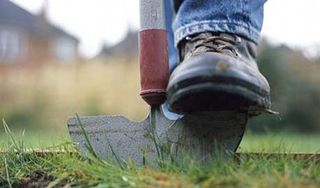 Grass Clippings - BBC Gardeners'  World Lawn Tips