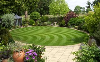 Grassclippings - Daily Telegraph Lawn Competition - Mike Lee