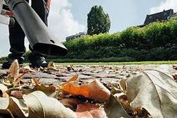 Grass Clippings - Stihl Leaf Blower