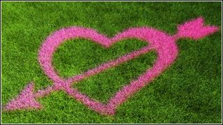 Grassclippings - Valentine's Day - Love your Lawn