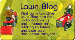Lawn Advice Blog