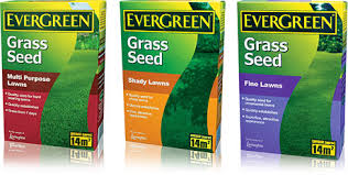 Grass Clippings - Grass Seed