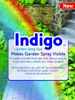 Indigo Garden Spray Dye - Amazon