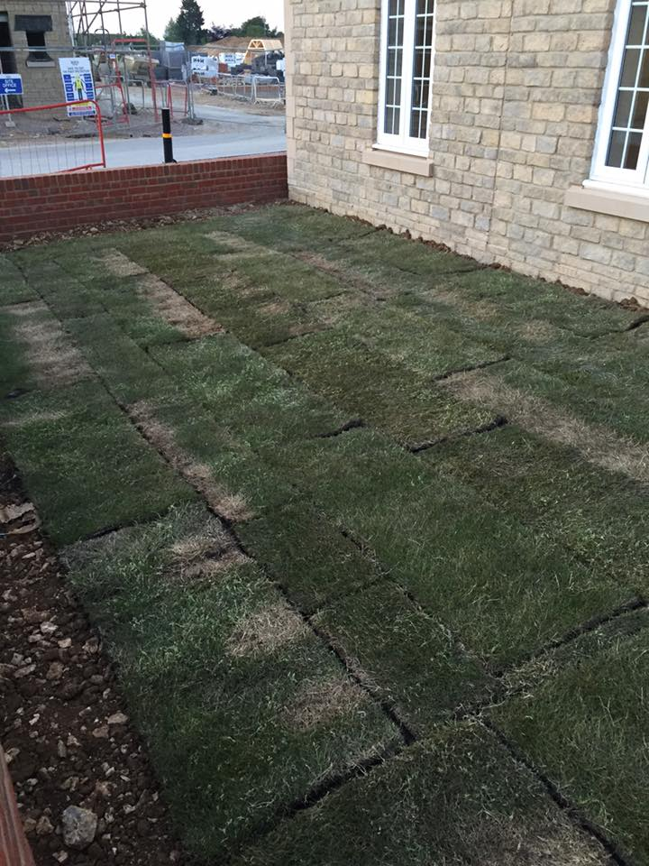 Grass Clippings - Badly Laid Turfed Lawns