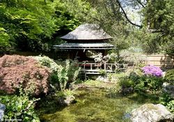 Grass Clippings - Gardener Inherits Garden