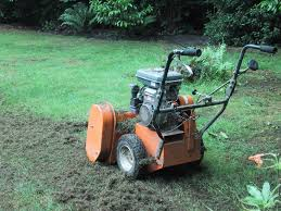 Grass Clippings - Scarification of a Lawn