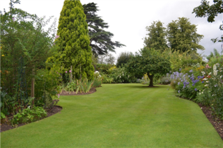 Grassclippings - Britain's Best Lawn Competition