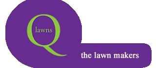 Grassclippings - QLawns Stocking CastClear