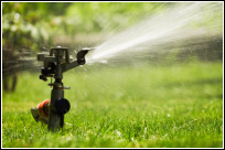 Watering a new lawn