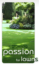 Passion_for_lawns_3