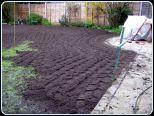 Renovate a Lawn 01