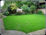Renovate a Lawn 3