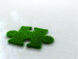 Grass Clippings - Spring Lawn Treatments