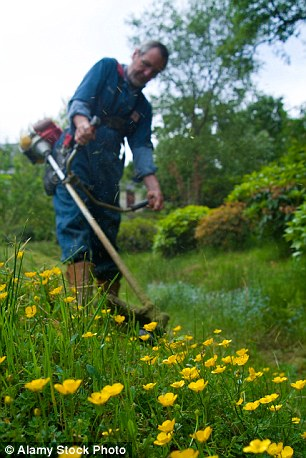 Council Strimmer Ban for Workers