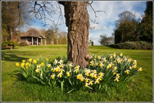 Grassclippings - Spring Lawn Care