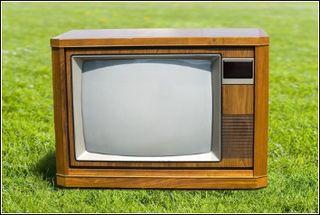 Lawns on TV