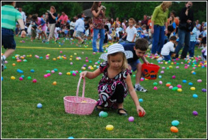 Lawn Treatment - Easter Lawn Care