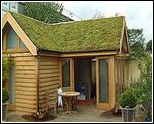 Green Roof with Enviromat