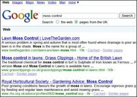 Moss Control - Google Search - 15.04.2009