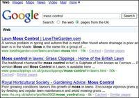 Moss Control - Google Search - 15.04.2009