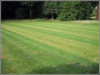 Fertilise a Lawn