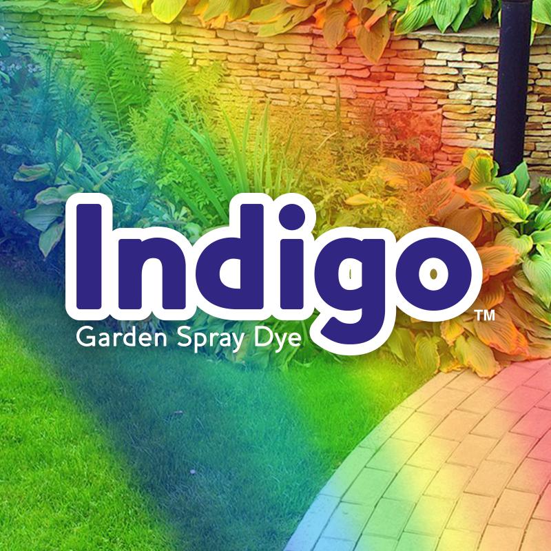 Indigo-main-image