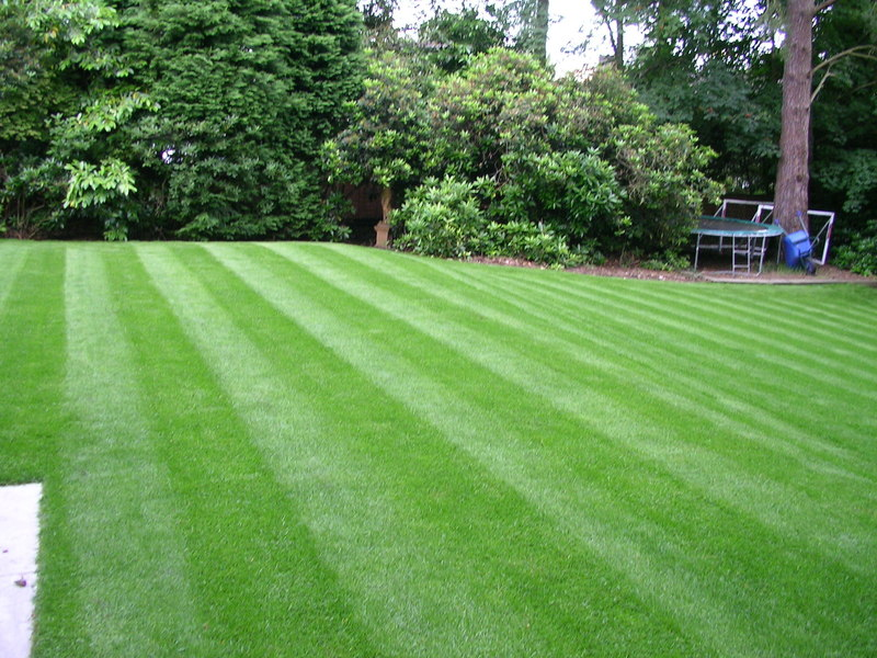 GrassClippings - Turf Prices to Rise