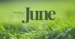 Grass Clippings - June Lawn Care Tips