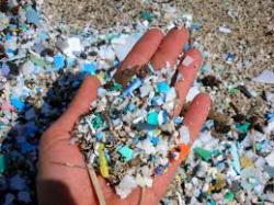 Ocean Micro Plastics