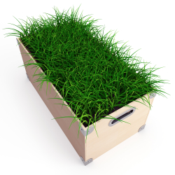 Lawn in a Box - Sign Up