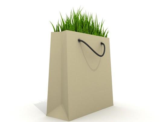 Lawn Shopping Bag
